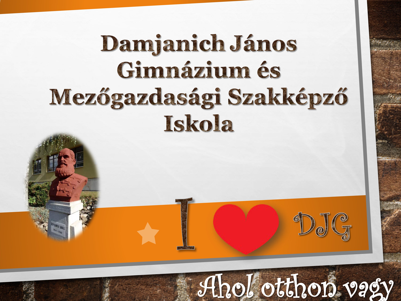 Damjanich János Gimnázium, Szakközépiskola és Kollégium
